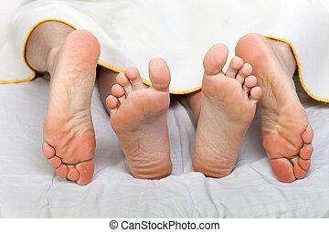 humano, cama, sexo