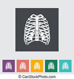 Icon de tórax humano.