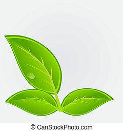 icono ambiental con planta. Ilustración del vector