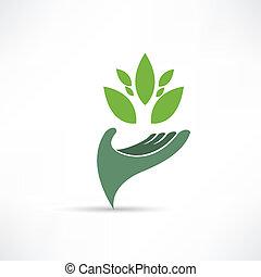 Icono ambiental ecológico