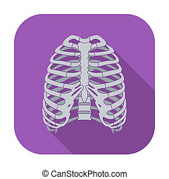 Icono del tórax humano.