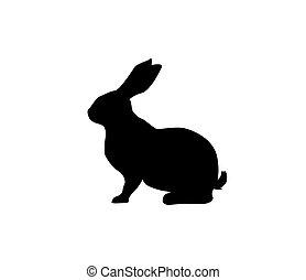 icono, o, empaquetado, fondo., hare., blanco, diseño, logotipo, aislado, silueta, vector