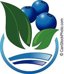 icono, resumen, bluberry