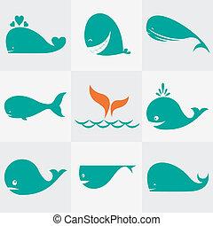 iconos, ballena, conjunto, vector