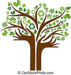 iconos, manos, árbol, dos, ecológico