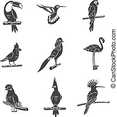 iconos negros de ave