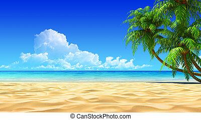 idílico, palmas, tropical, playa de arena, vacío