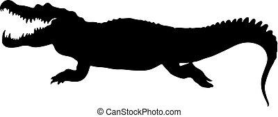 ilustración, aislado, vector, crockodile., silueta, negro