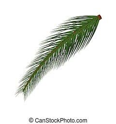 ilustración, blanco, aislado, plano de fondo, árbol, navidad, vector, rama