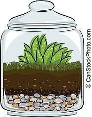 ilustración, botánica, terrario