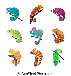ilustración, conjunto, isolated., plano, camaleón, vario, lagartos, vector, colorido