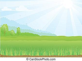 Ilustración de campo verde con rayos de sol y cielo azul.