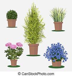 Ilustración de flores en hierba.