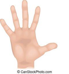 Ilustración de manos
