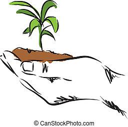 Ilustración de plantas colgando de la mano