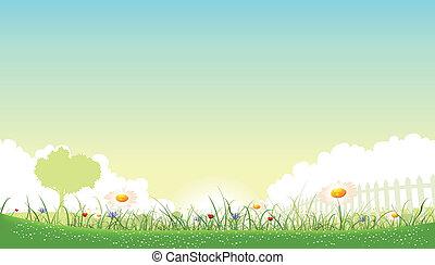 Ilustración de un hermoso jardín de flores paisajes con margaritas, amapolas y flores de maíz en primavera o en verano
