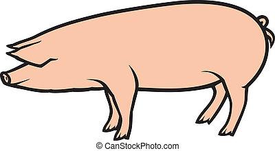 Ilustración de vector de cerdo