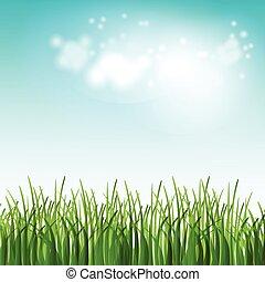 Ilustración de vectores campo de verano verde con flores y hierba