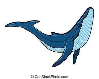 Ilustración de vectores de ballena azul