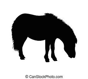 Ilustración de vectores de caballos