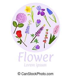 Ilustración de vectores de diseño floral. Lavanda de jardín botánica natural, rosa, iris y composición decorativa de flores de narciso. Cartel de flores, cito espacio de copia.