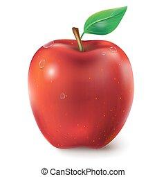 Ilustración de vectores de un jugoso rojo