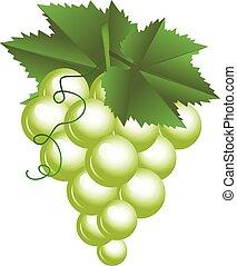 Ilustración de vectores de uvas