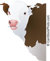 Ilustración del vector de la cabeza de una vaca