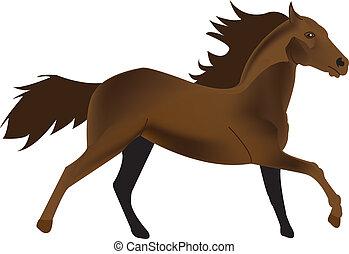 Ilustración del vector de un caballo