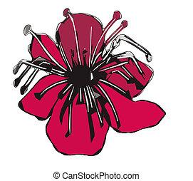 Ilustración del vector de una flor roja