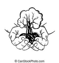ilustración, estilo, árbol, vector, bosquejo, conjunto, manos de valor en cartera