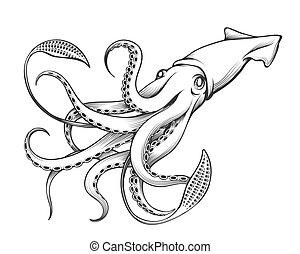 ilustración, grabado, calamar, gigante