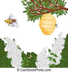 ilustración, lila, moscas, colmena, miel, forest., abeja, vector
