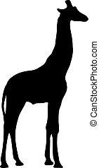 ilustración, vector, negro, silueta, giraffe.