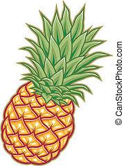 Ilustración vectorial de piña