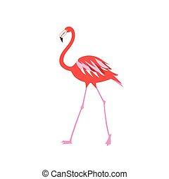 Ilustración vectorial de un flamenco rojo