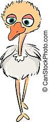 Ilustración vectorial de un lindo bebé avestruz en fondo blanco