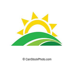 Ilustración vectorial del sol del amanecer