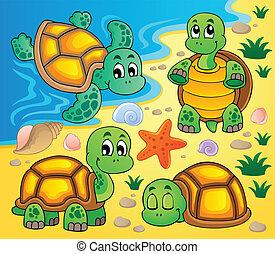 Imágenes con el tema 2 de la tortuga