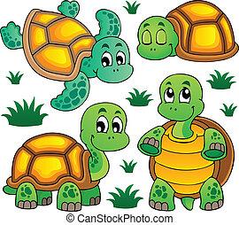 Imágenes con el tema de la tortuga 1