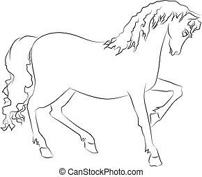 Imágenes de un caballo sobre fondo blanco