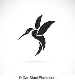 Imágenes de un colibrí