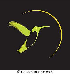Imágenes de un fummingbird.
