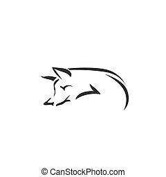 Imágenes de un zorro de fondo blanco