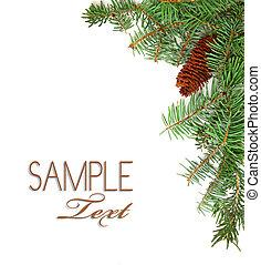 imagen, árbol, pino, rústico, tallos, navidad, piña