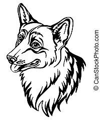 imagen, corgi, perro, vector, fondo blanco