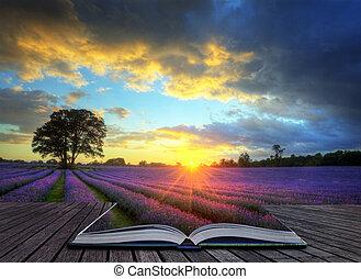 Imagen creativa de hermosa imagen de hermoso atardecer con nubes atmosféricas y cielo sobre campos de lavandas maduras en el paisaje del campo inglés