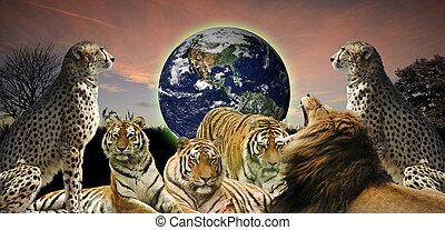 Imagen creativa de la vida silvestre animal protegiendo al planeta Tierra como pertenece a ellos y a los humanos
