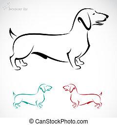 Imagen del vector de un perro (Dachshund)