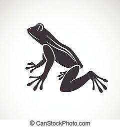 imagen, rana, vector, diseño, plano de fondo, blanco